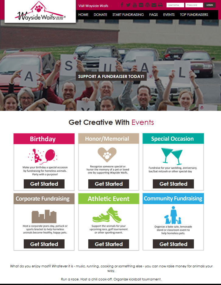 Portfolio will hull mpa wayside waifs luminate online teamraiser design do it yourself diy design solutioingenieria Images